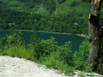 015: 15 Boračko jezero uprostřed bujné zeleně, focené za jízdy z dodávky. K němu se váže pověst o chudé vdově.