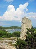 45 Rozvaliny bývalé pevnosti Gradina.